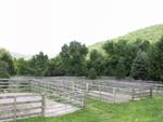 facilities-paddocks