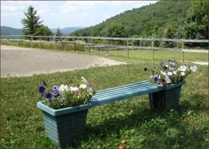flowerbench